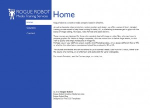 Rogue Robot Media Training Services